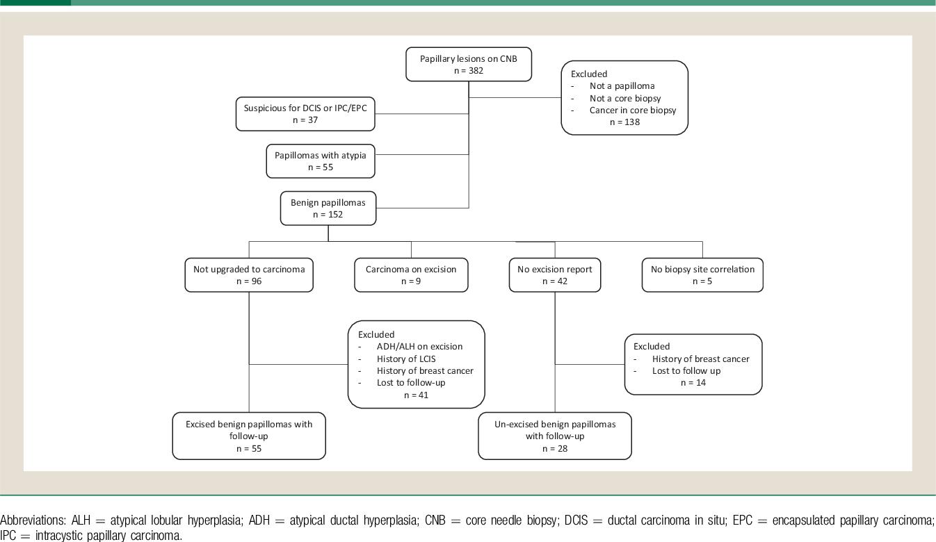 papilom intraductal simptome cauzele cancerului de coloana