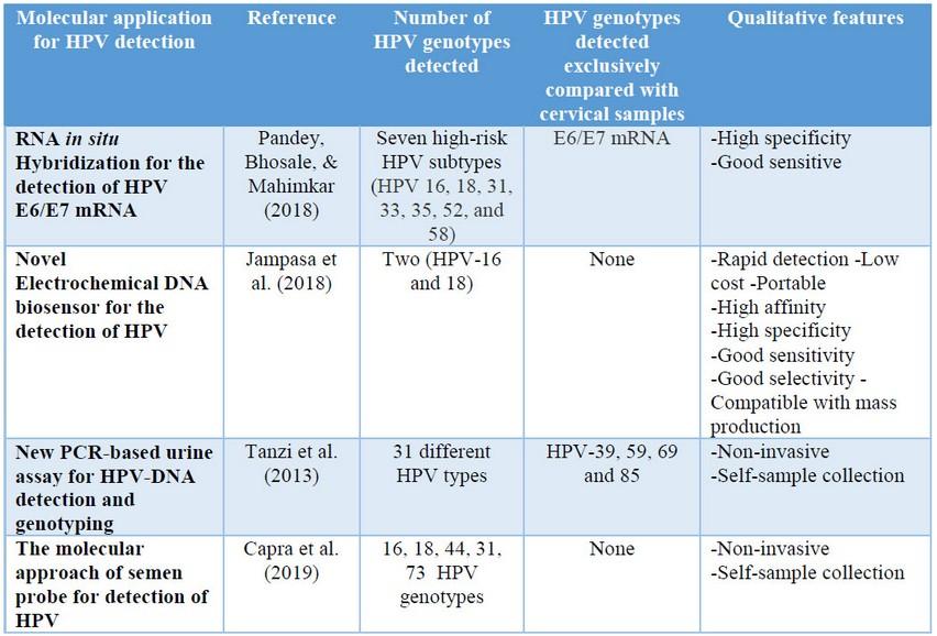 hpv high risk screen mrna