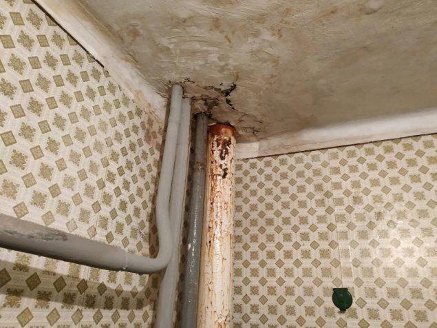pelin din apartament produse detoxifiere secom