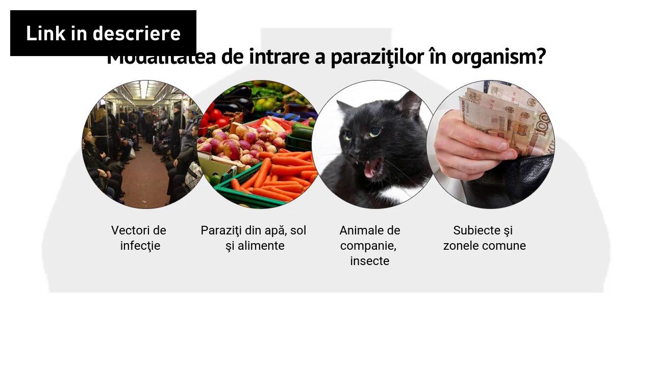 Modul de recuperare a medicamentelor pentru paraziți din organism Modul de recuperare din paraziți