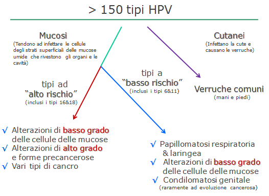Papilomavirus uman și prostatită Papilloma virus umano ad alto rischio oncogeno