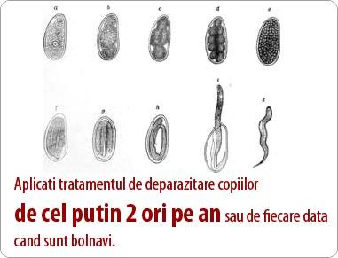 infecția cu viermi rotunzi