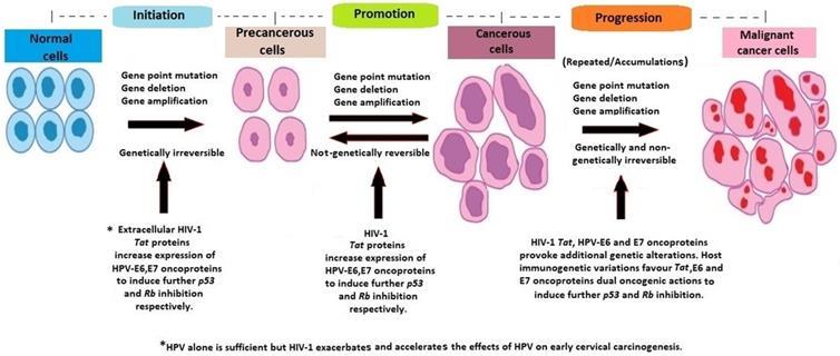 cancer e hpv tratamentul viermilor de sunna