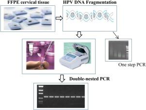 human papillomavirus detection by pcr vaccin papillomavirus effets secondaires 2020
