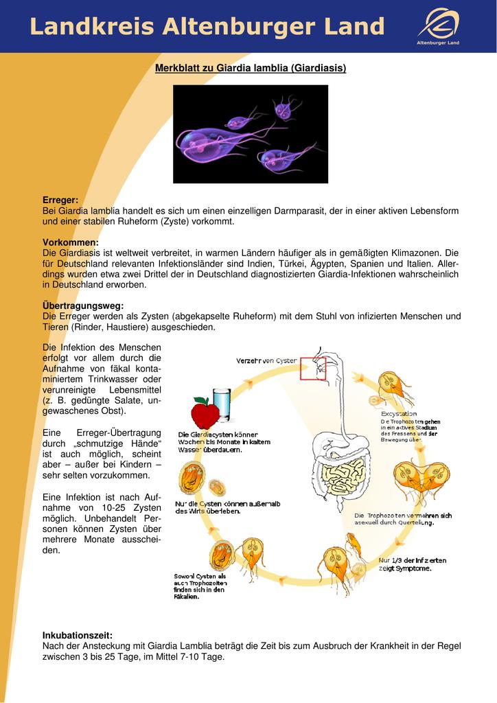 detoxifiere lamaie gastric cancer korean