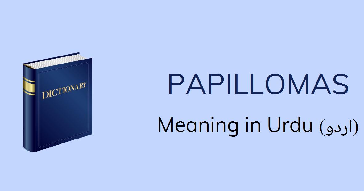 hpv word meaning in urdu
