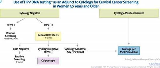 Human papillomavirus treatment guidelines, hhh | Cervical Cancer | Oral Sex