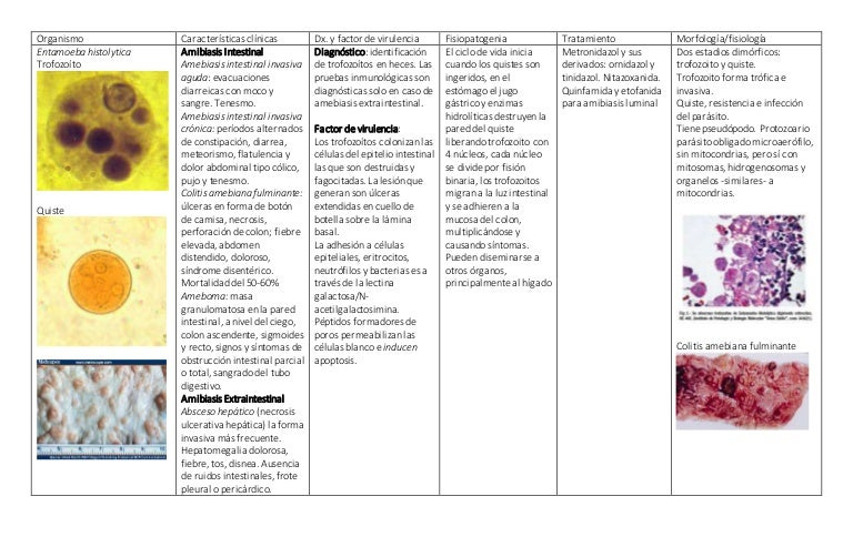 Oxiuros tratamiento topico Tratamiento caseros para los oxiuros,