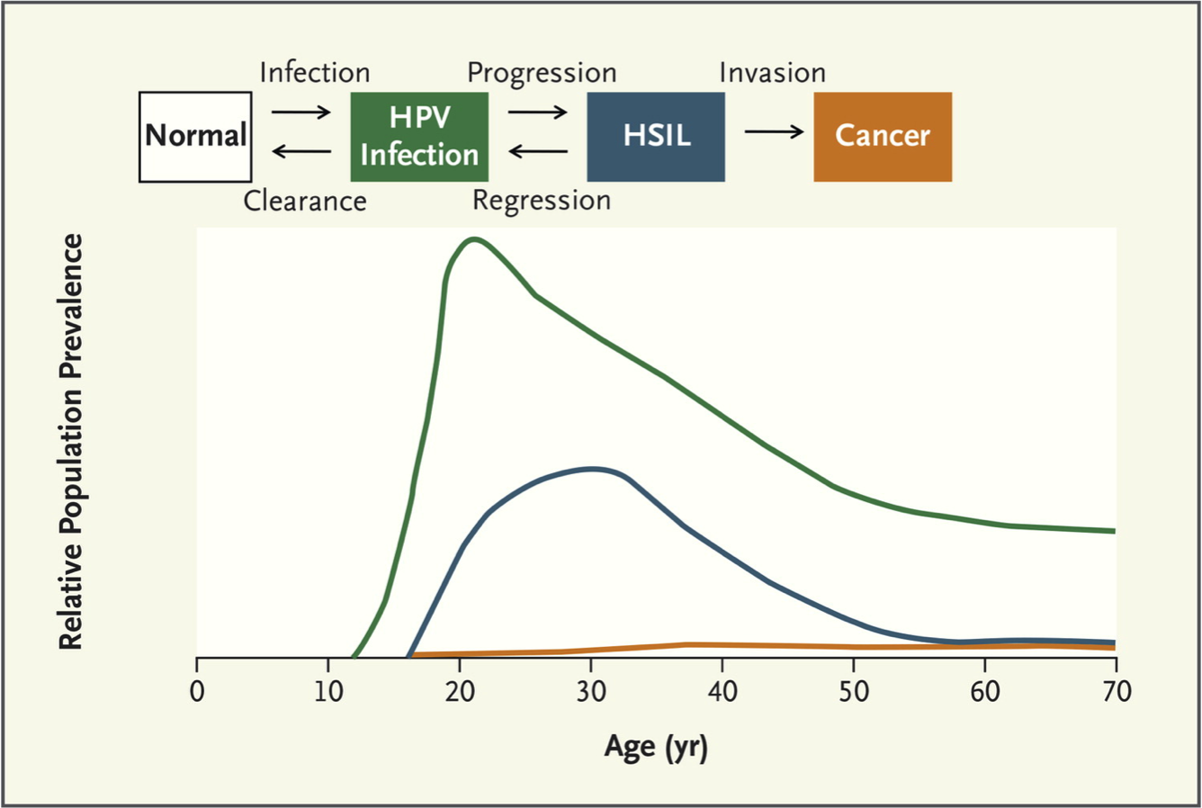 Human papillomavirus prevalence - Management in Health, Vol 17, No 2 ()