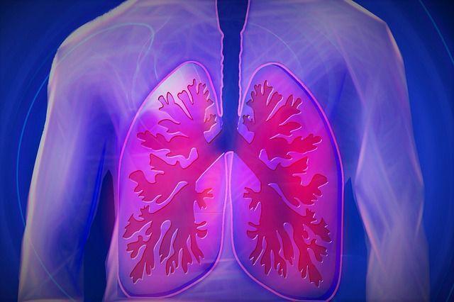 detoxifiere plamani in 3 zile se simte ca un vierme