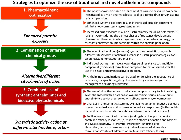 all about anthelmintic