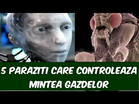 paraziți și gazdele lor respiratia urat mirositoare la adulti