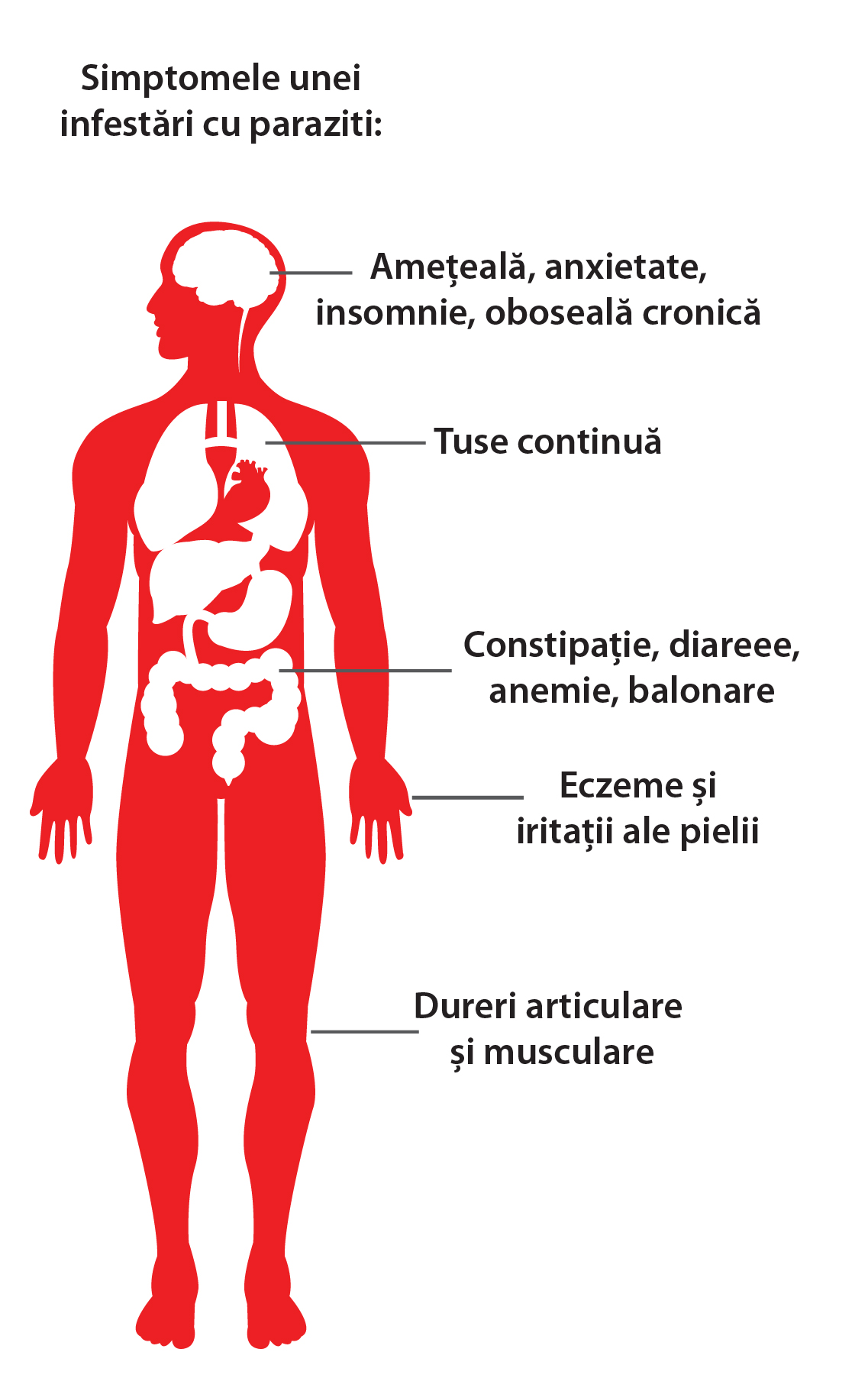 tratamentul viermilor și giardiozei