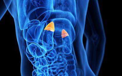 metastatic cancer meaning in gujarati