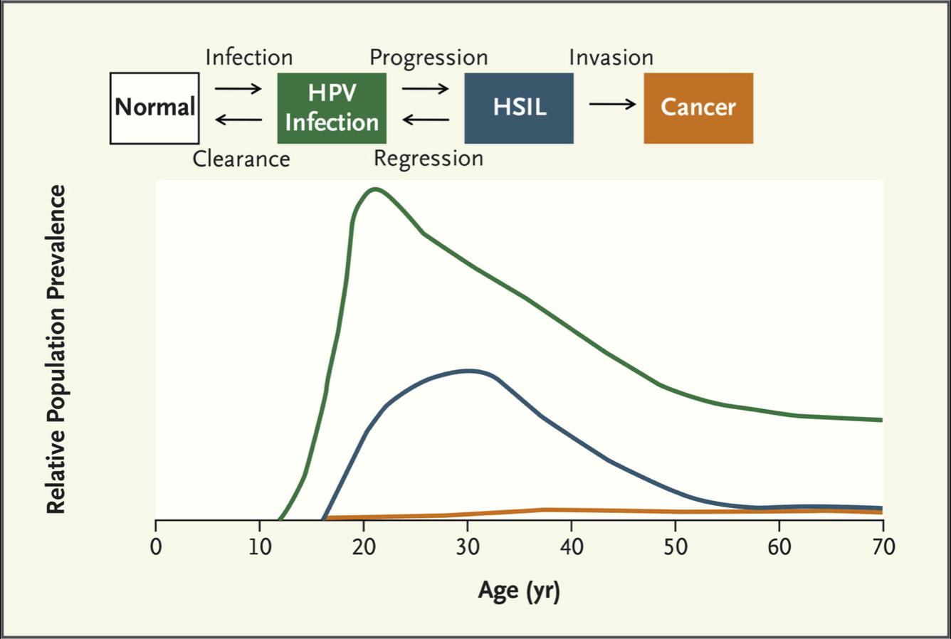 papillomavirus infection prevalence hierbabuena oxiuros
