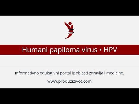 hpv virus rak grlica maternice bacterie qui ronge les os