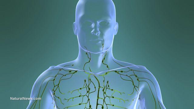 cancer limfatic simptome cauze paraziti ve strevech kocky