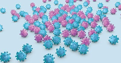 hpv ricerca papilloma virus)