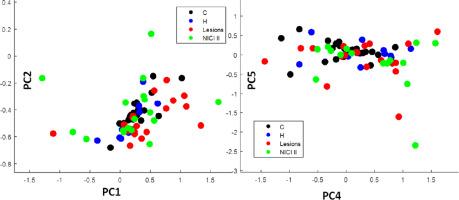 human papillomavirus detection by pcr