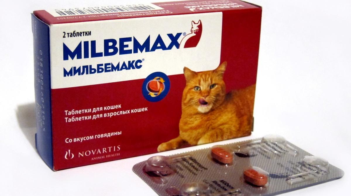 pastile de vierme pentru adulți titlu