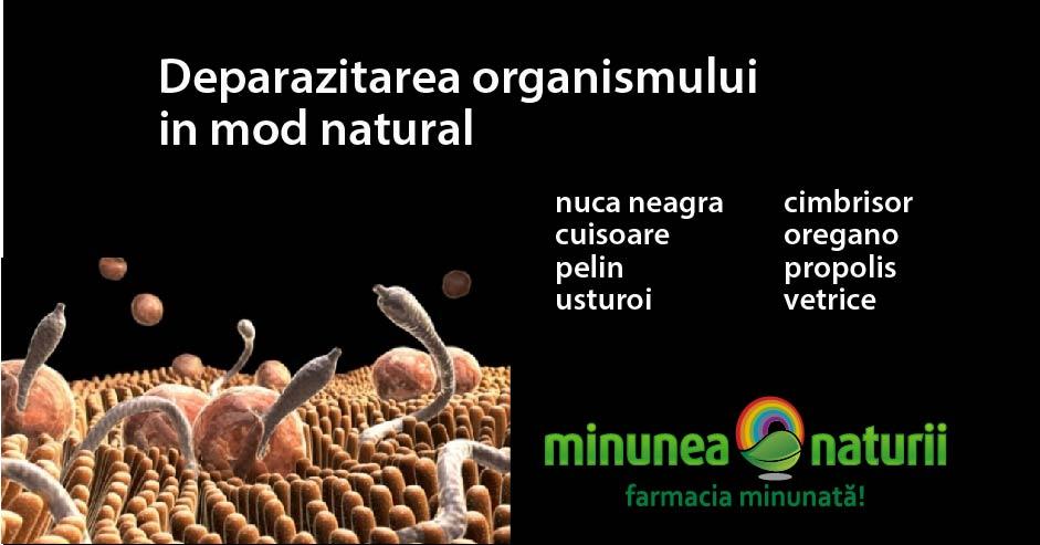 produse minunate de curățare a paraziților detoxifiere lamaie
