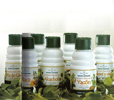 Tratament cu viermi elecampane, Tratament cu viermi elecampane Rădăcini elecampane cu condiloame