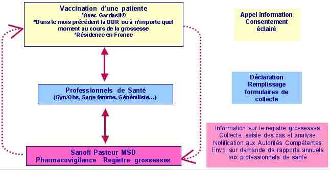 Vaccin papillomavirus et grossesse - Virusi biologija 1 razred