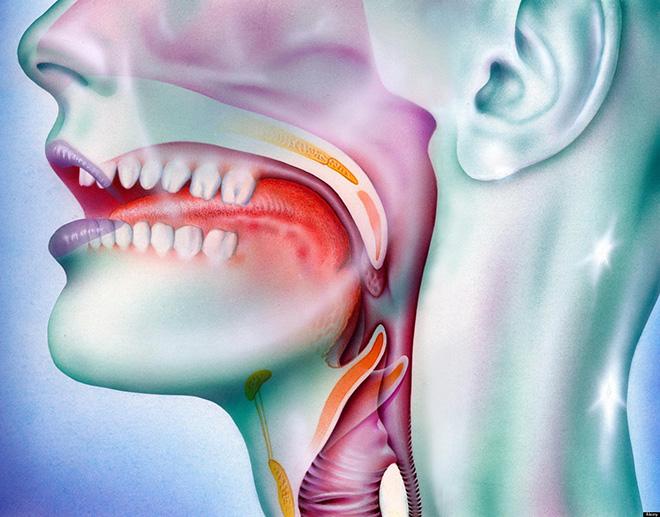 Papilloma virus gola incubazione