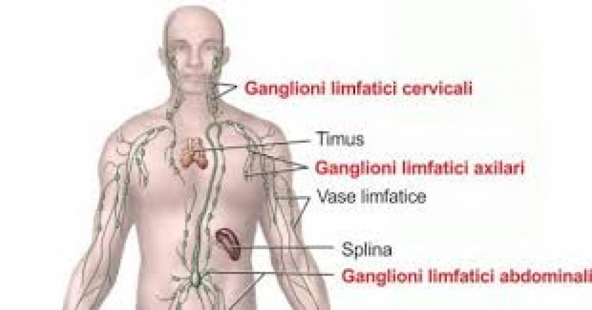 cancer limfatic limfom non- hodgkin