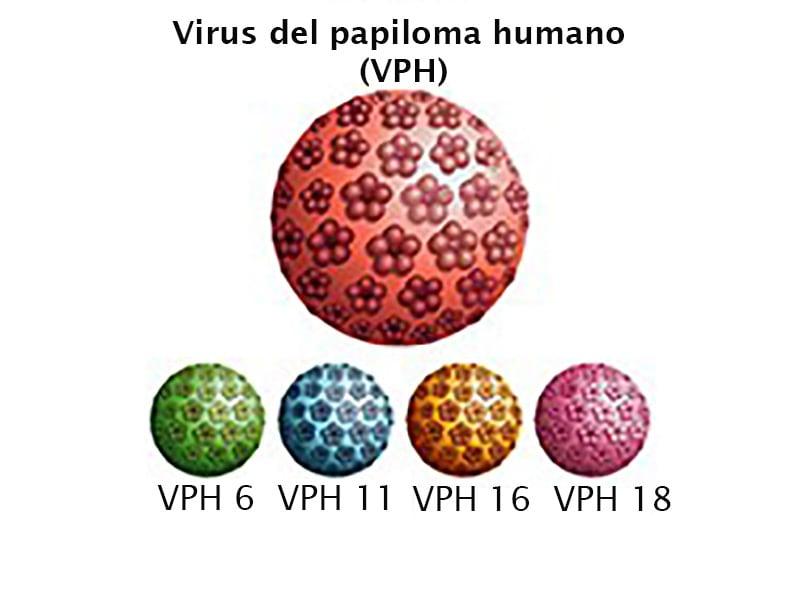 papiloma virus colposcopie