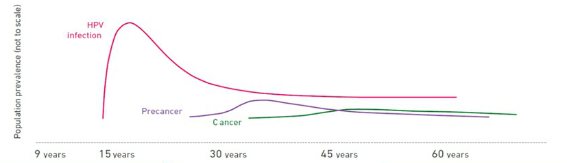 hpv and cancer statistics