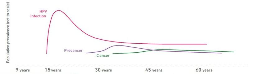 cancer and hpv virus eliminarea viermilor din corpul de toate tipurile