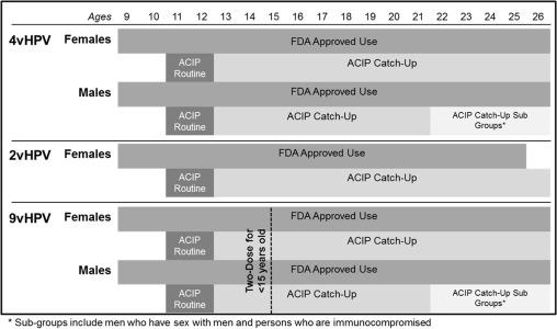 human papillomavirus infection gender differences agent antiparazitar eficient pentru om