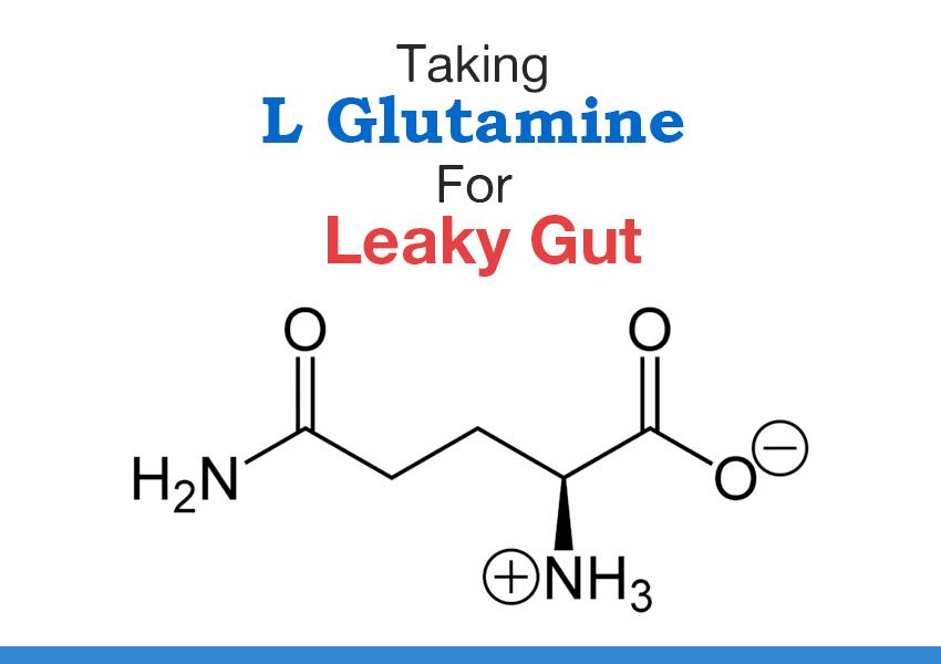 l- glutamine dysbiosis